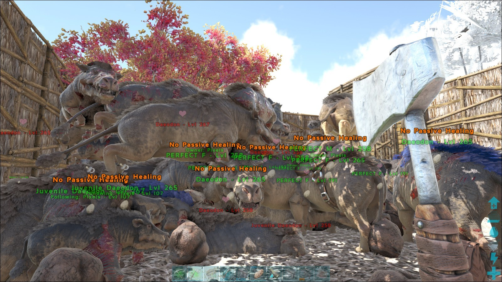 Searching For Ark Survival Evolved Admincheat summon daeodon_character_bp_c or admincheat spawndino blueprint'. searching for ark survival evolved